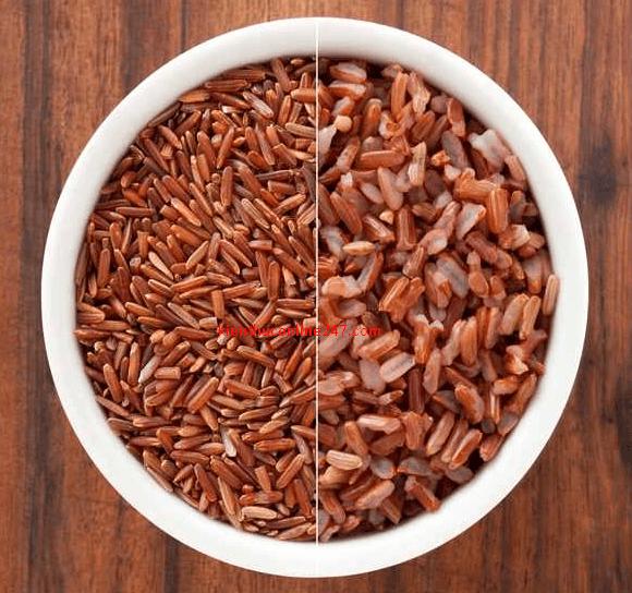 protein thực vật gạo nứt