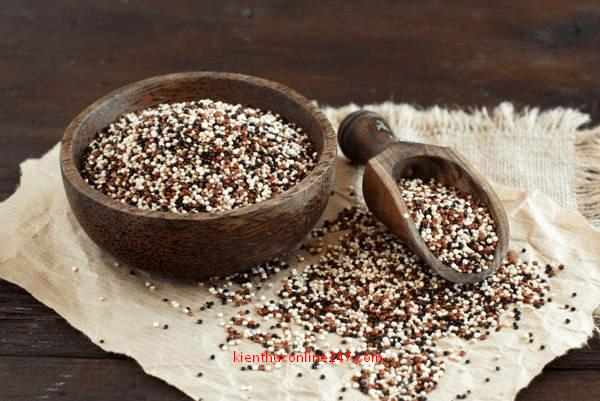 protein thực vật hạt diêm mạch quinoa