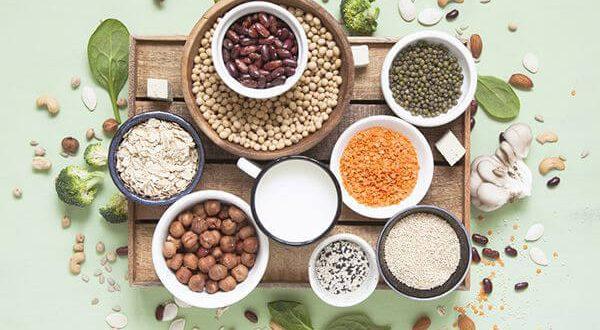 protein thực vật