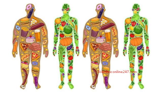 So Sánh Sự Khác Nhau Giữa Protein Thực Vật Và Protein Động Vật
